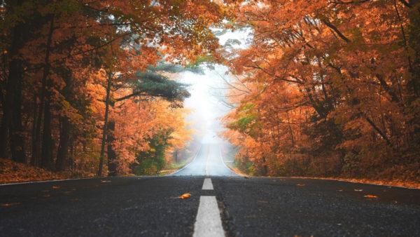 region_automne_camping_car